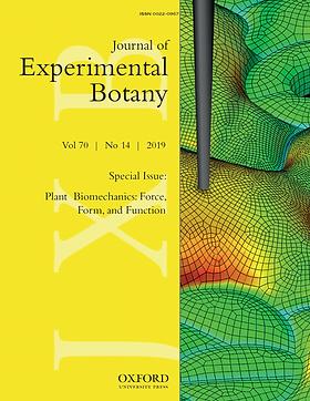 JXB2019-Plantbiomechanics.png