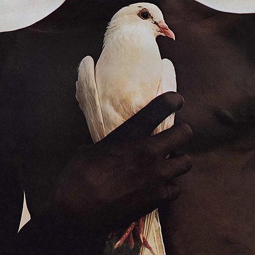 Santana - Greatest Hits (1974) (150 Gram Vinyl, Download Insert) (L.P.)