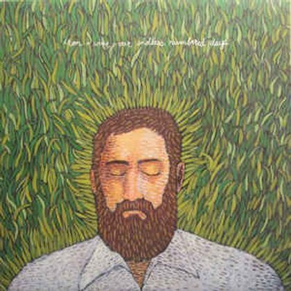 Iron + Wine* – Our Endless Numbered Days (LP)