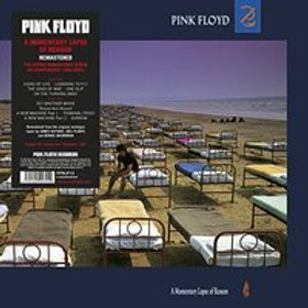 Pink Floyd - A Momentary Lapse of Reason (LP)