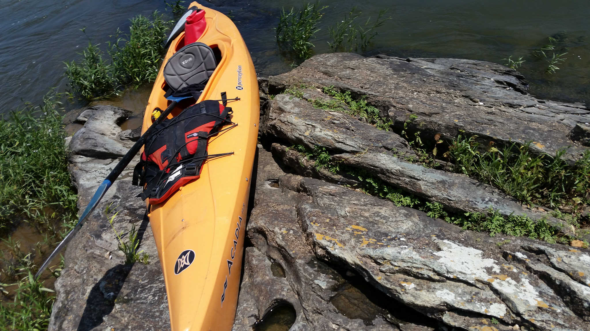 Family Kayaking Day on the Potomac (2).jpg