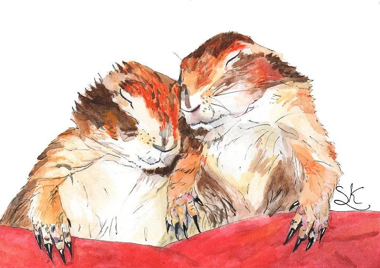Prairie Dogs Card