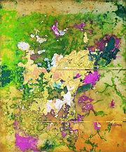 70x50 2005 Smadar untitled.jpg