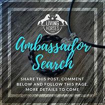 Living Horses Ambassador Search