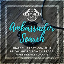 Living Horses Ambassador Search