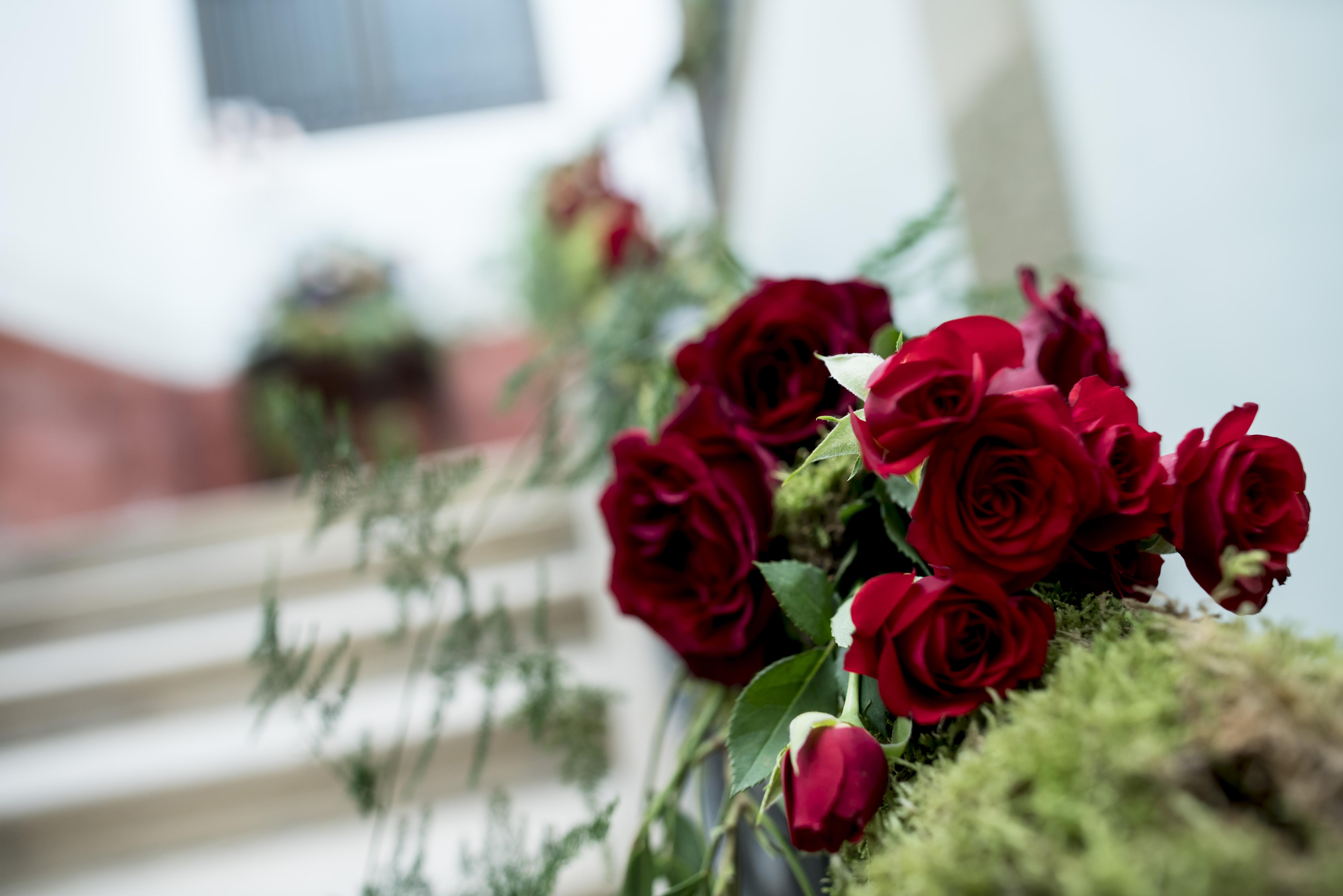 Flores escalera noble