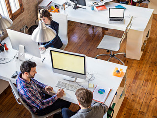 Why Healthy Workspaces Are All the Rage
