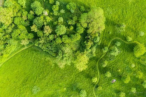paysage-drone-DJI_0498.jpg