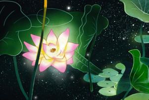 Blossom 7, Night.jpg