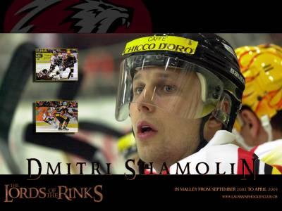 Dmitri Shamolin
