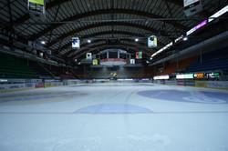 BCF Arena.jpg