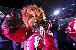 La Coupe aux Lions