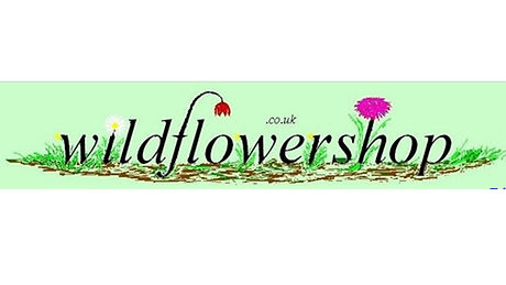 Wildflower Shop.jpg