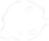 Devin_Logo-white_transback.png