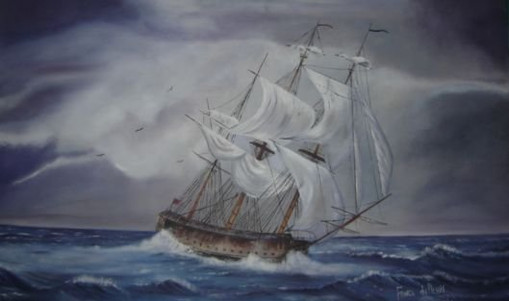 Franci du Plessis