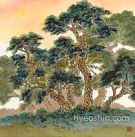 pine-trees2.jpg