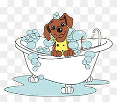 404-4046638_cat-clipart-bath-cartoon-dog