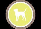 agility dog tenerife