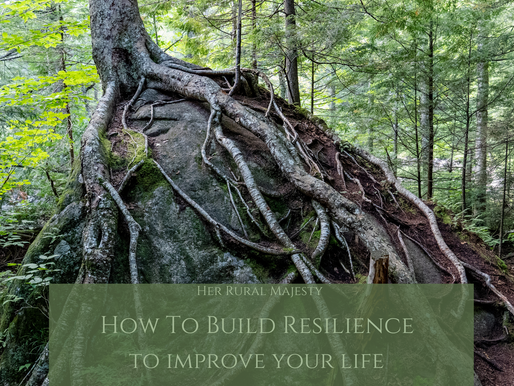 The Beginners Guide to Building Resilience!