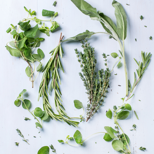 Herbal Remedies for Feet