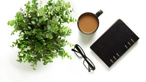 Journal, Coffee, Glasses, Shrub