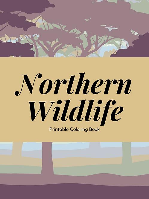 North American Wildlife Coloring Book