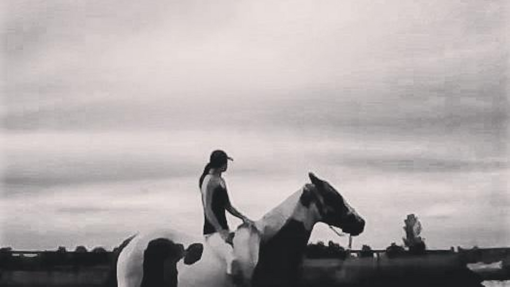 Horse and Rider Confident