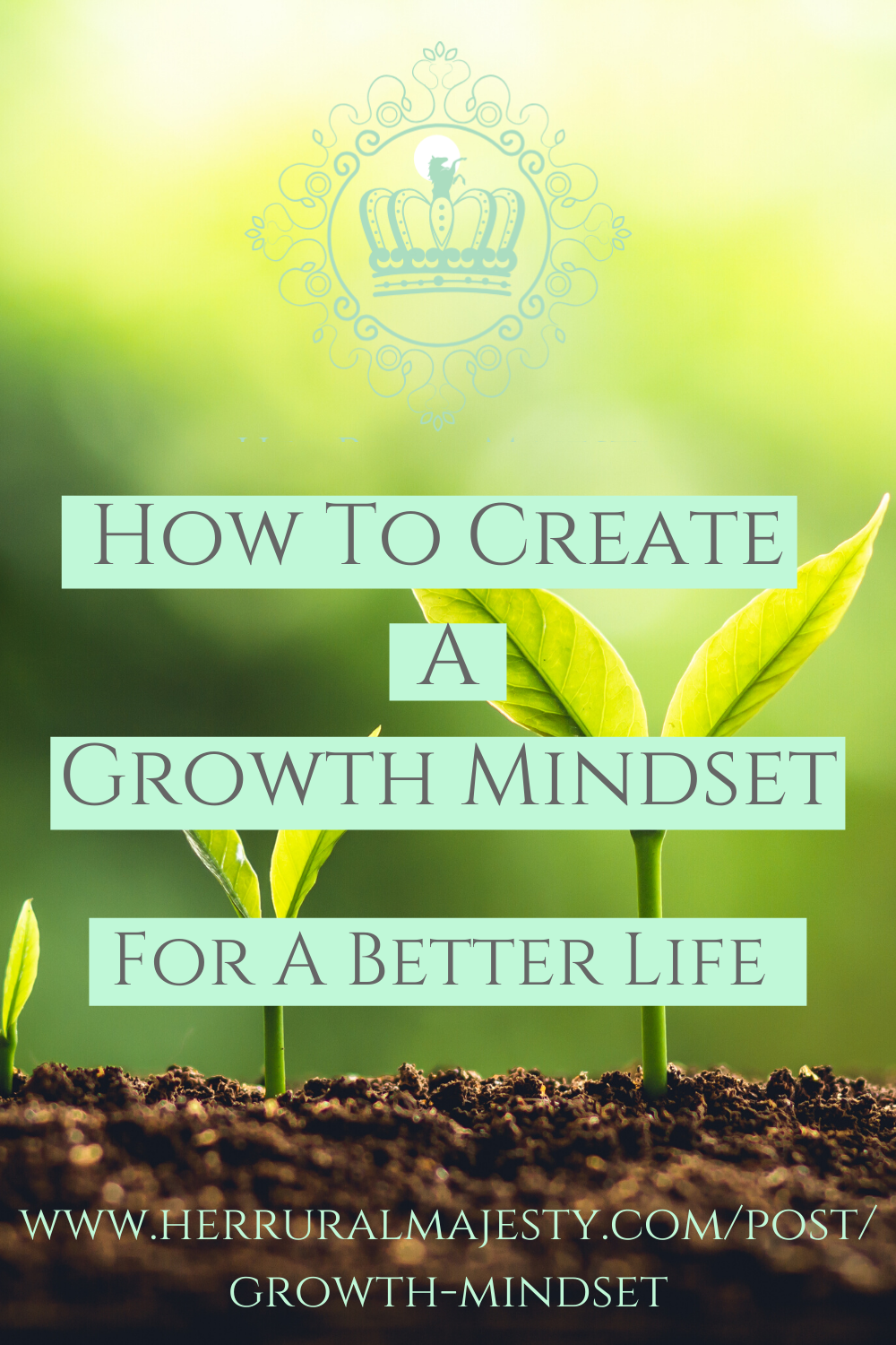 How To Achieve A Growth Mindset For A Better Life