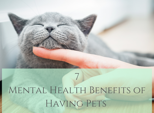 7 Mental Health Benefits of Having Pets
