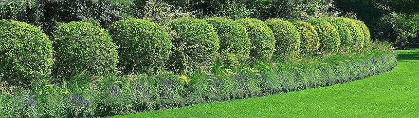 Gartenarbeiten Köln