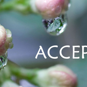 Shifting Mindsets Through ACCEPTANCE