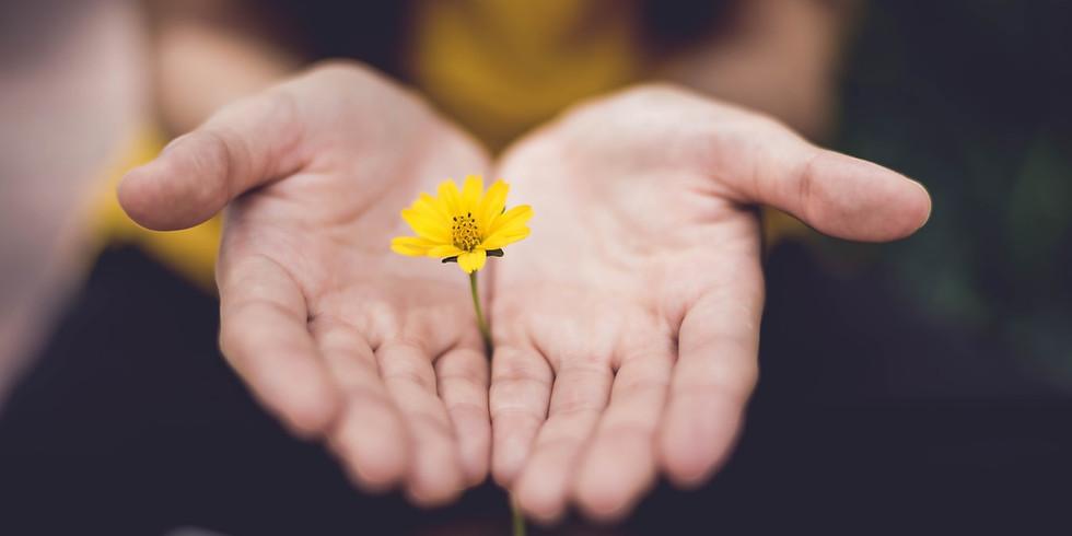 ONLINE SERIES   11:11   Class 5: Forgiveness