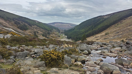 Wicklow Mountains - Day 7.jpg