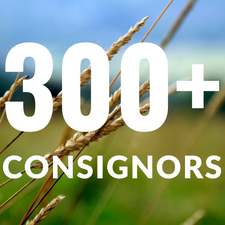 300+ Consignors.png