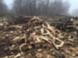 Seasoned Firewood Lot in Noblesville Indiana