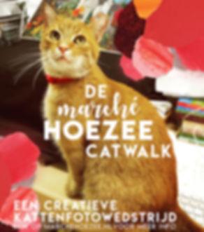 messydesk-cat2-klein.jpg