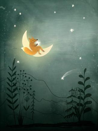 Fox on the moon