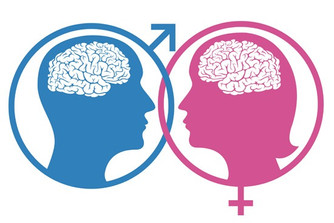 NO Difference Between Male & Female Brains... Which I've Been Saying All Along ;)