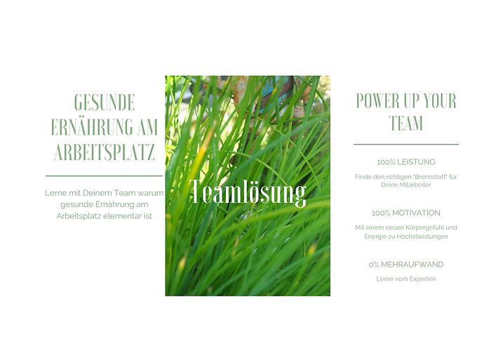 website Teamlösung.png
