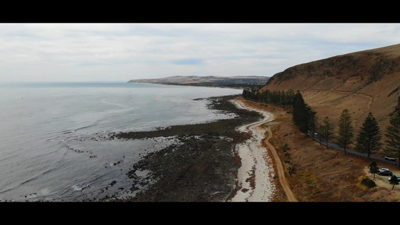 Shoreline2.mp4