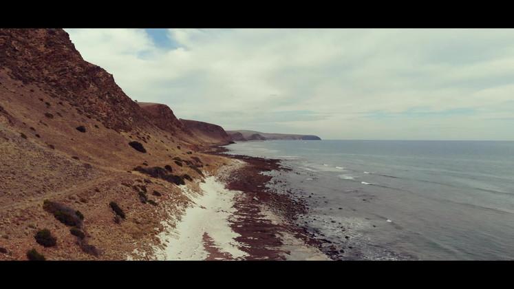 Shoreline.mp4