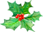 christmas_flower.png