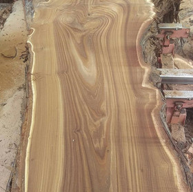 Live Edge Russian Olive Slab