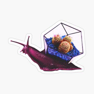 Snail Sticker