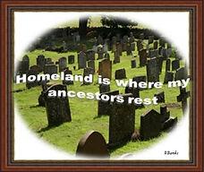 Homeland Quote 5.jpg