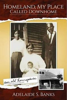 Homeland book cover.jpg