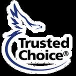 TrustedChoicebacklogopsd.png