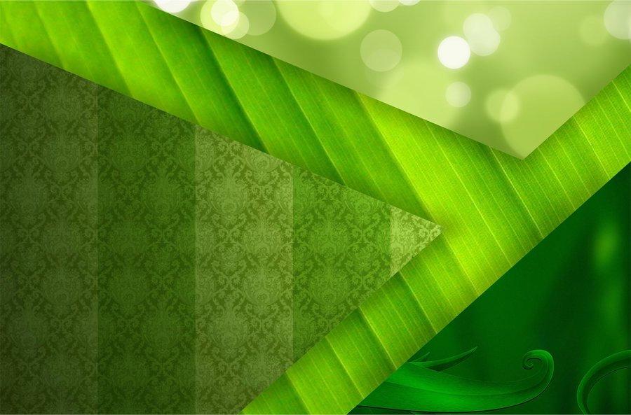green+bkgd11.jpg