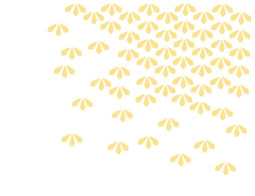 websiteDotYourIs-04.jpg