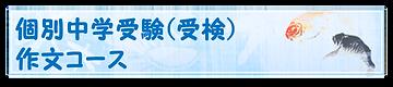 個別中学受験(受検)作文
